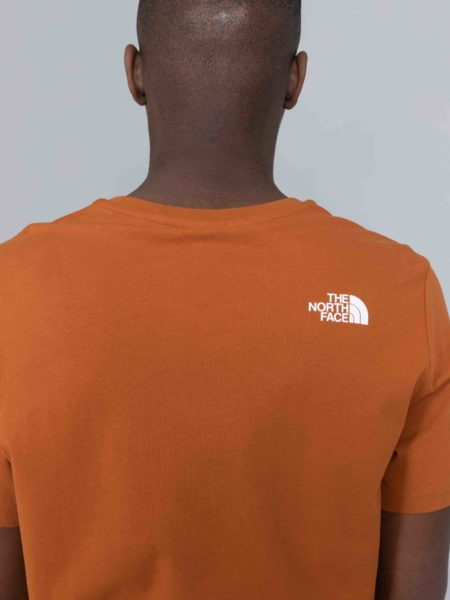 The North Face Fine Alpine Equipement Tshirt Caramel Cafe brussels