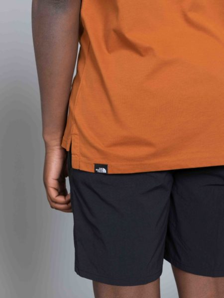 The North Face Fine Alpine Equipement Tshirt Caramel Cafe sale